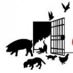 Profilbild von Die Tierbefreier*Innen
